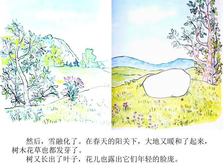 然后,雪融化了。在春天的阳关下,大地又暖和了起来,树木花草也都发芽了。