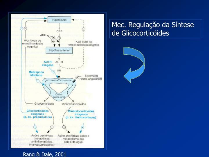 Mec. Regulação da Síntese de Glicocorticóides