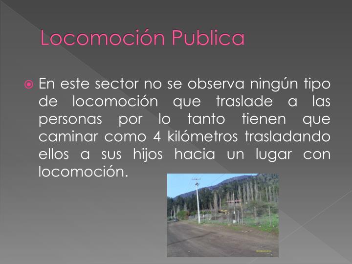 Locomoción Publica