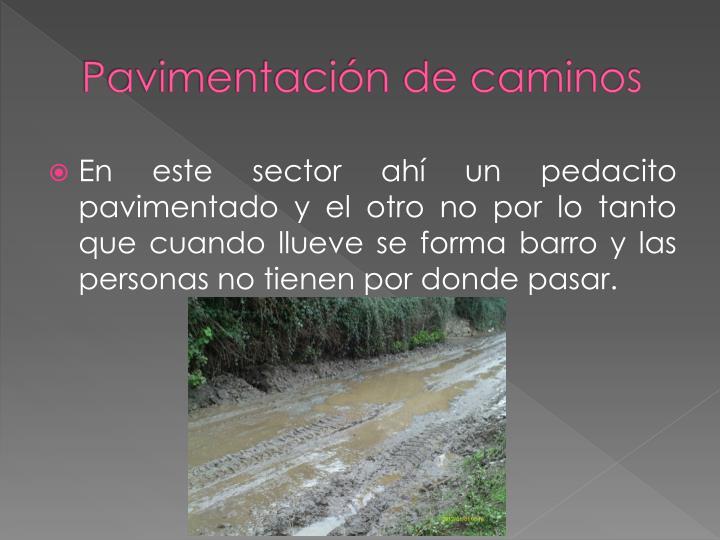 Pavimentación de caminos
