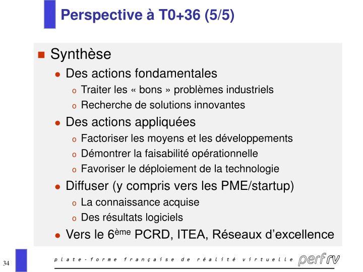 Perspective à T0+36 (5/5)