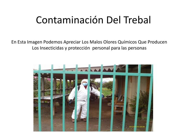 En Esta Imagen Podemos Apreciar Los Malos Olores Qumicos Que Producen Los Insecticidas y proteccin  personal para