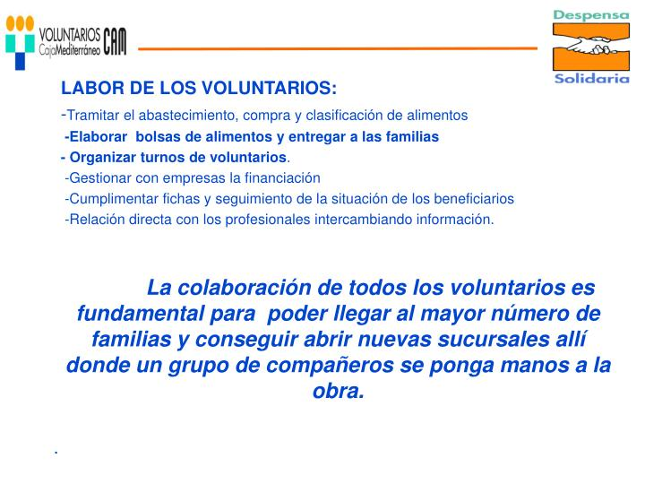 LABOR DE LOS VOLUNTARIOS: