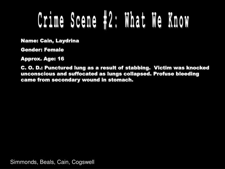 Crime Scene #2: What We Know
