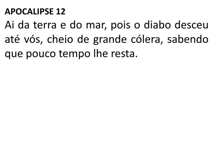 APOCALIPSE 12