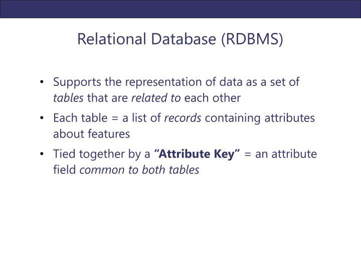 Relational Database (RDBMS)