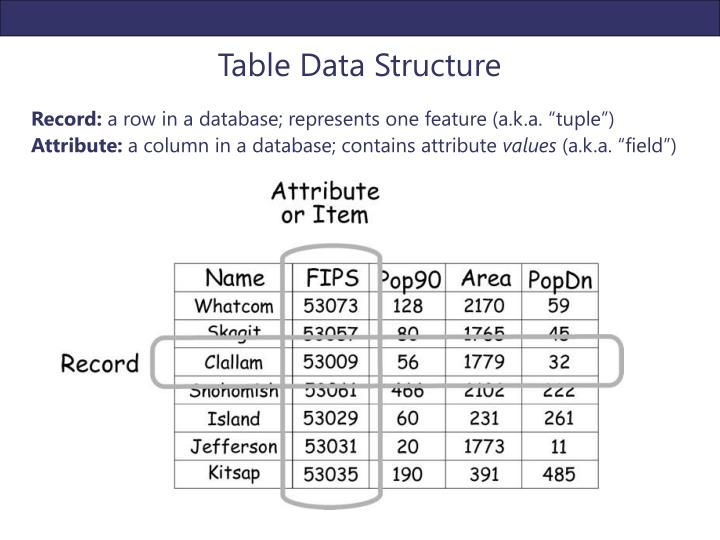 Table Data Structure