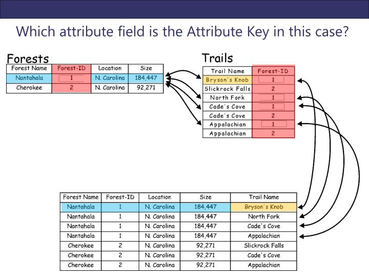 Which attribute field is the Attribute Key in this case?