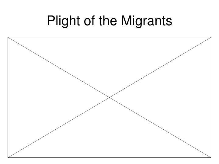 Plight of the Migrants
