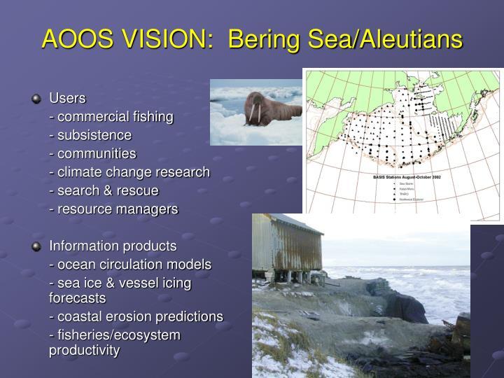 AOOS VISION:  Bering Sea/Aleutians