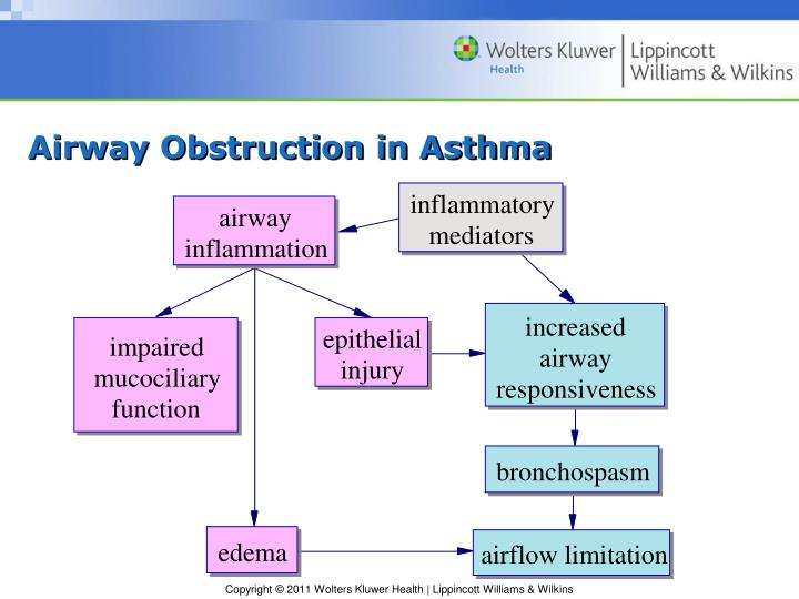 Airway Obstruction in Asthma