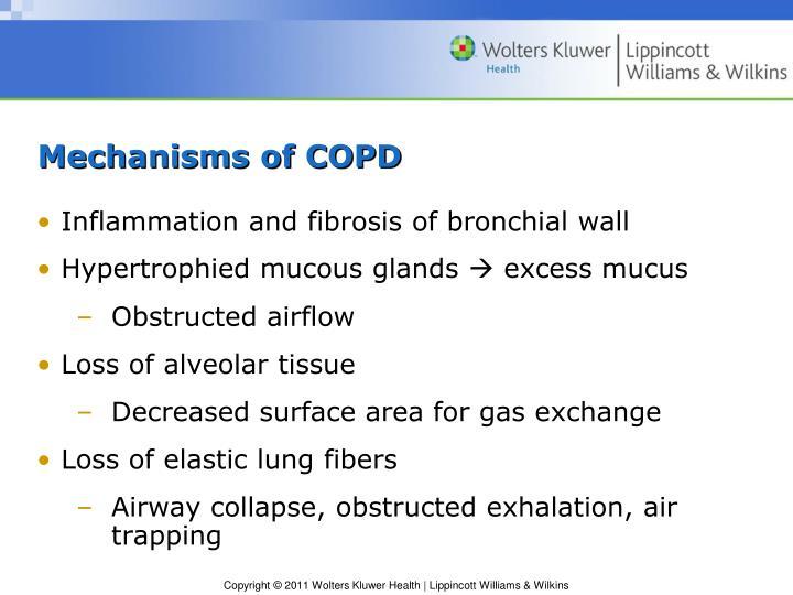Mechanisms of COPD