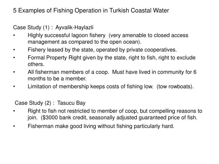 5 Examples of Fishing Operation in Turkish Coastal Water