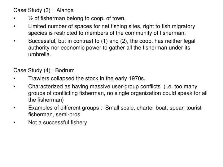 Case Study (3) :  Alanga