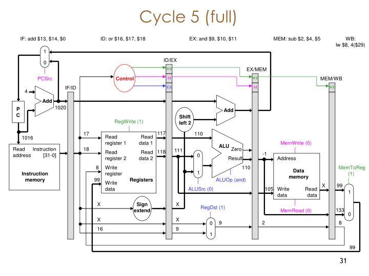 Cycle 5 (full)