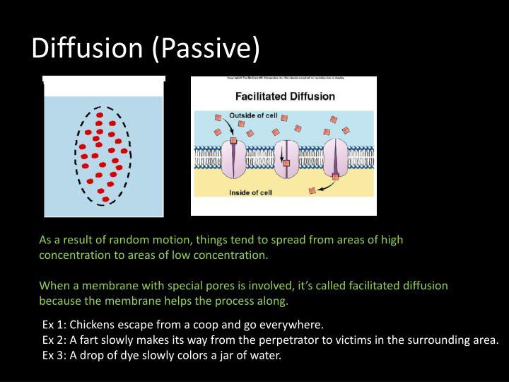 Diffusion (Passi