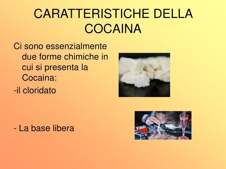 CARATTERISTICHE DELLA COCAINA