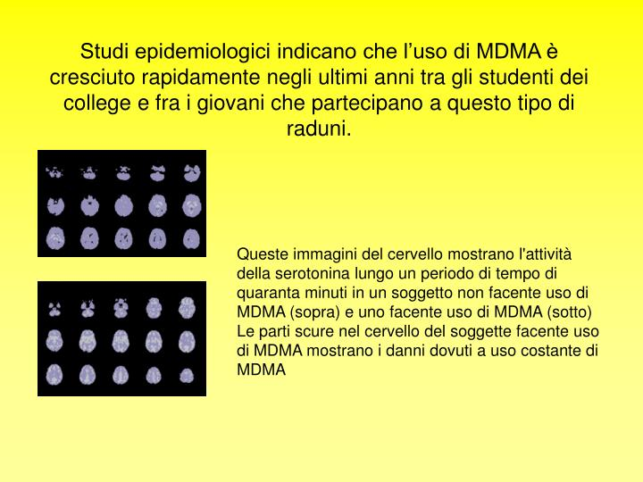 Studi epidemiologici indicano che l'uso di MDMA è cresciuto rapidamente negli ultimi anni tra gli studenti dei college e fra i giovani che partecipano a questo tipo di raduni.