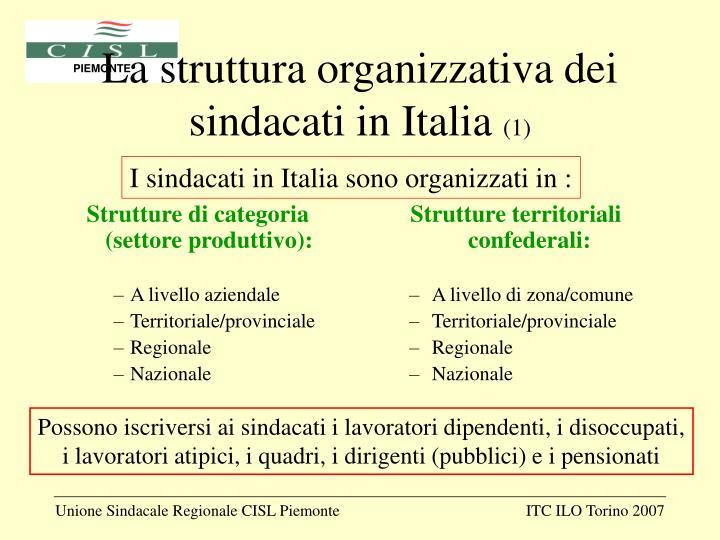 Strutture di categoria (settore produttivo):
