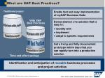 what are sap best practices