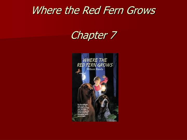 a book summary of wilson rawls where the red fern grows Plot summary of where the red fern grows by wilson rawls part of a free study  guide by bookragscom.