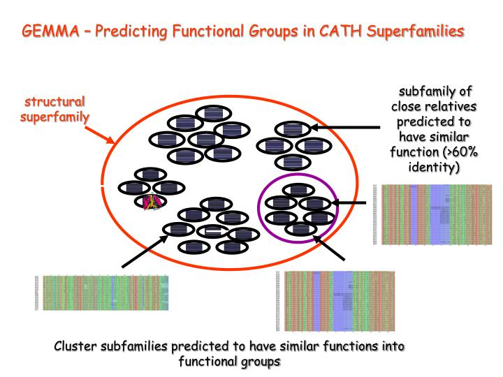 GEMMA – Predicting Functional Groups in CATH Superfamilies