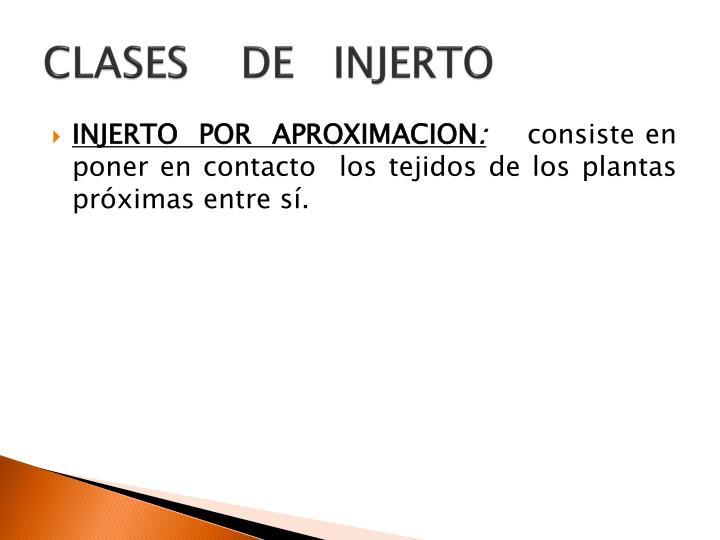 CLASES    DE   INJERTO