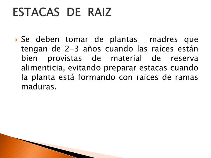 ESTACAS  DE  RAIZ