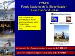 foner fondo nacional de la electrificaci n rural banco mundial