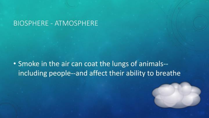 Biosphere - Atmosphere