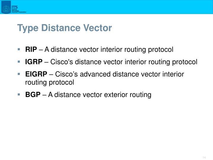 Type Distance Vector