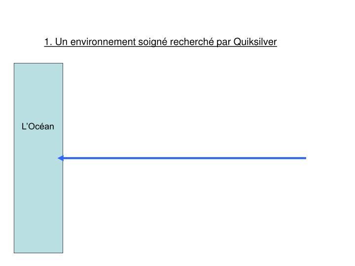 1. Un environnement soigné recherché par Quiksilver