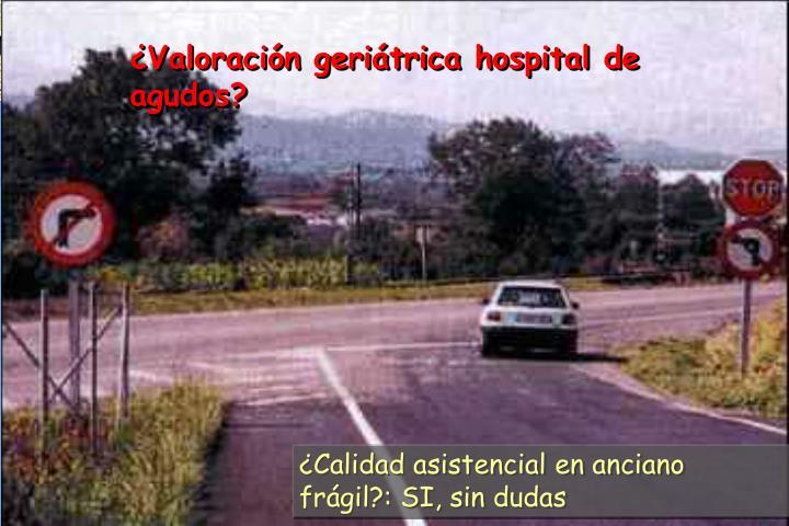 ¿Valoración geriátrica hospital de agudos?