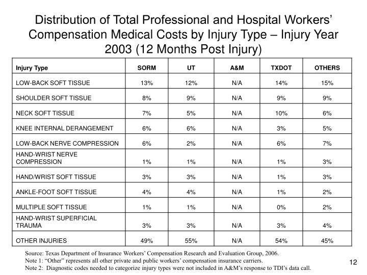 Distribution of Total Professional and Hospital Workers' Compensation Medical Costs by Injury Type – Injury Year 2003 (12 Months Post Injury)