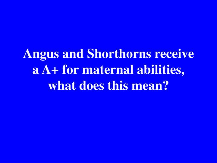 Angus and Shorthorns receive a A+ for maternal abilities, what does this mean?