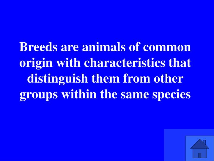 Breeds are animals of common origin with characteristics that distinguish them from other groups within the same species