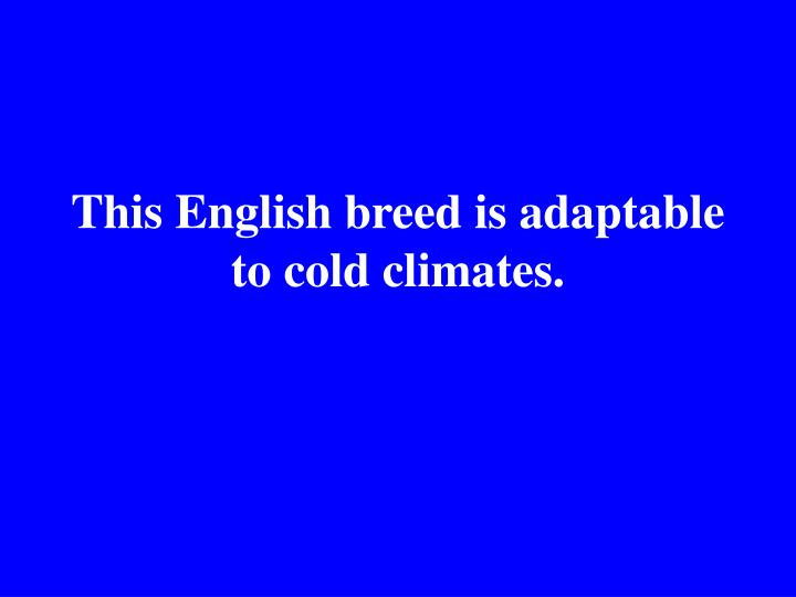 This English breed is adaptable to cold climates.