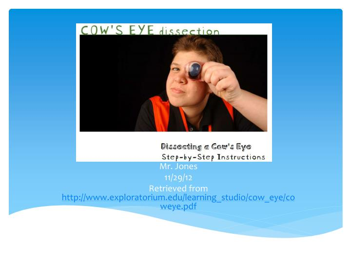 Mr jones 11 29 12 retrieved from http www exploratorium edu learning studio cow eye coweye pdf