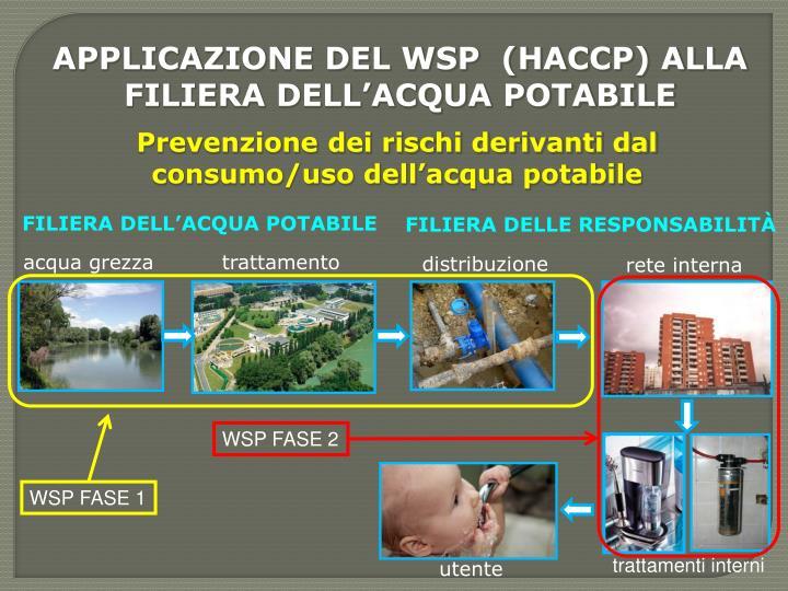 APPLICAZIONE DEL WSP  (HACCP) ALLA FILIERA DELL'ACQUA POTABILE