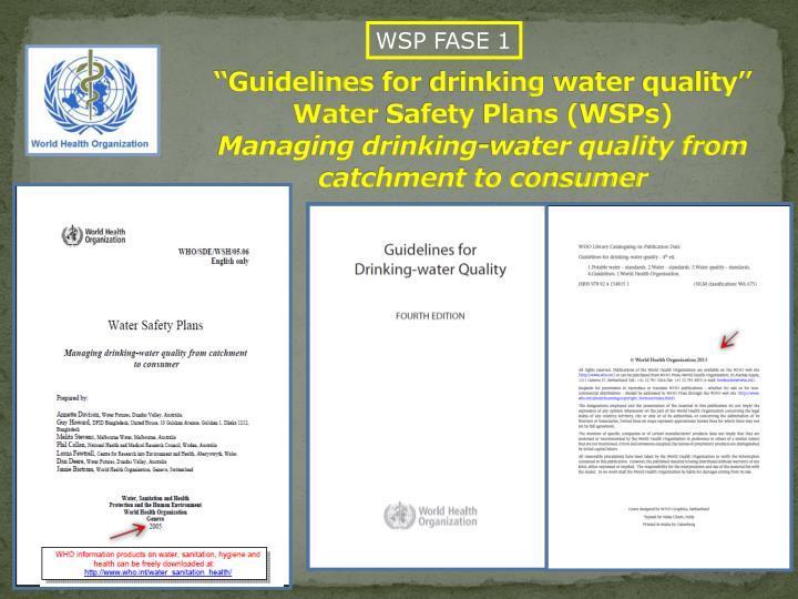 WSP FASE 1