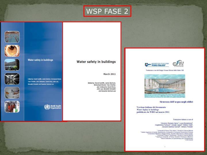 WSP FASE 2
