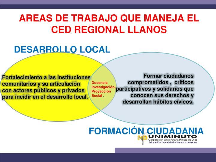 AREAS DE TRABAJO QUE MANEJA EL CED REGIONAL LLANOS