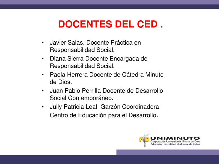 DOCENTES DEL CED .