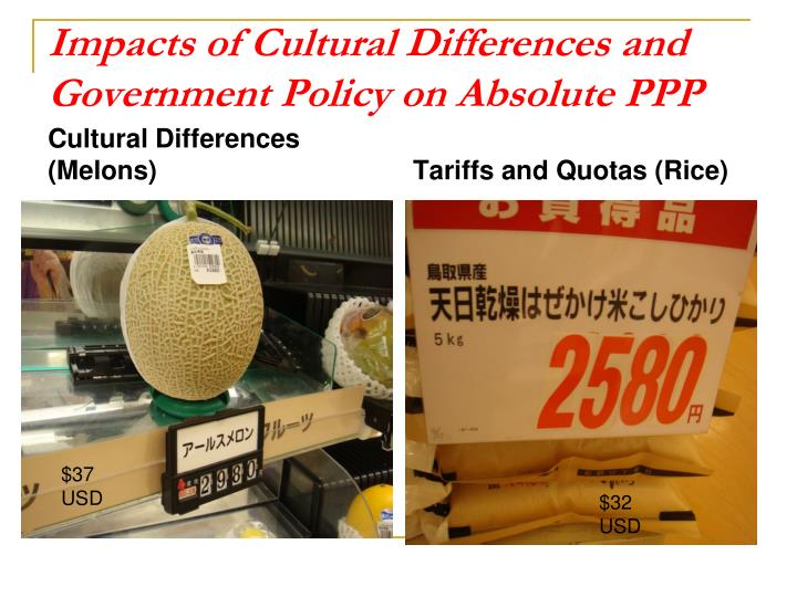 Impacts of Cultural Differences and Government Policy on Absolute PPP