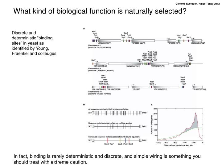 What kind of biological function is naturally selected?