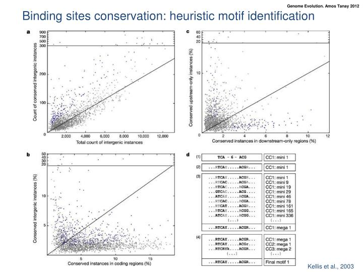 Binding sites conservation: heuristic motif identification