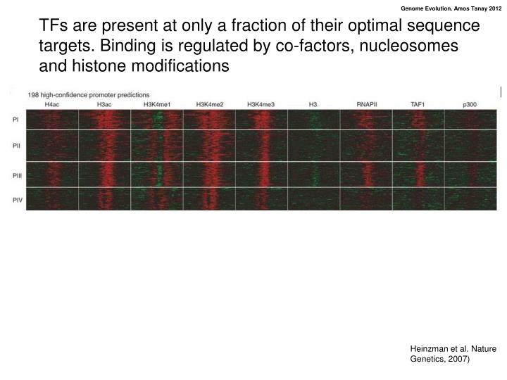 TFs are present at only a fraction of their optimal sequence targets. Binding is regulated by co-factors, nucleosomes and histone modifications