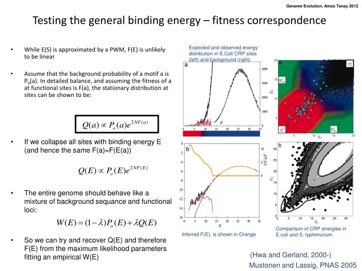 Testing the general binding energy – fitness correspondence