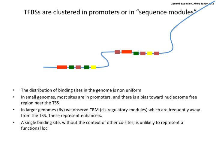 "TFBSs are clustered in promoters or in ""sequence modules"""