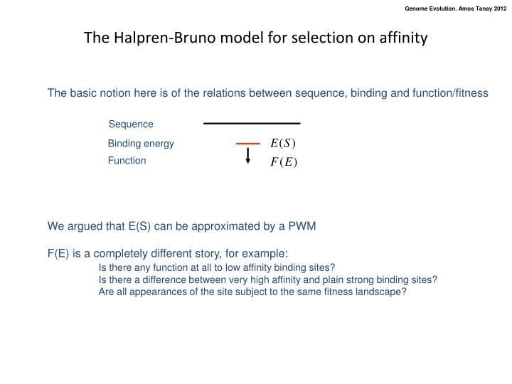 The Halpren-Bruno model for selection on affinity